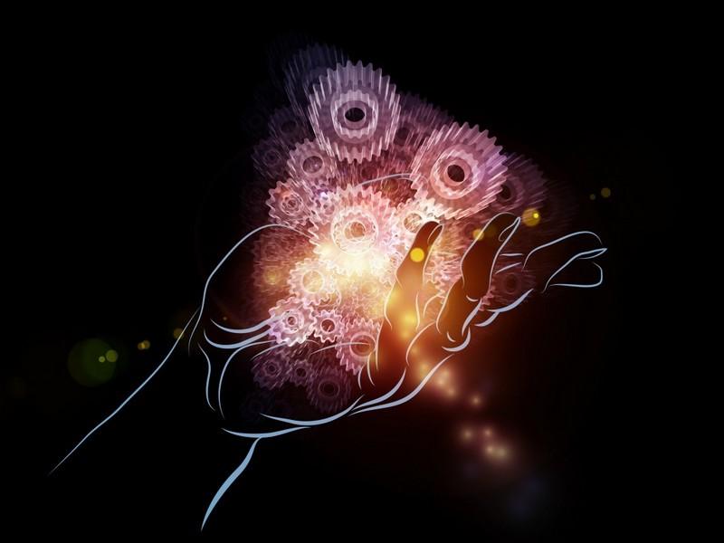 © agsandrew - Fotolia.com