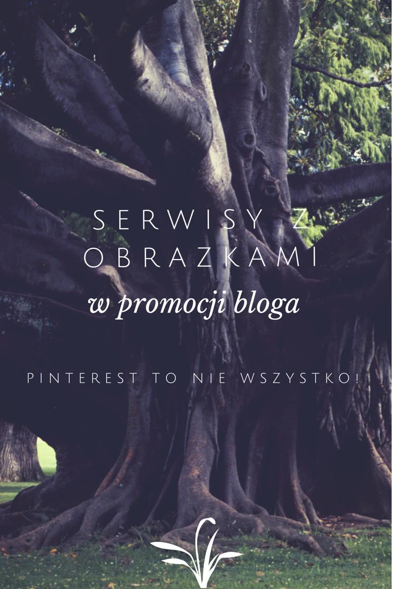 Jak promować bloga (stronę, sklep) za pomocą serwisów z obrazkami czyli mój sposób na tysiące odwiedzin