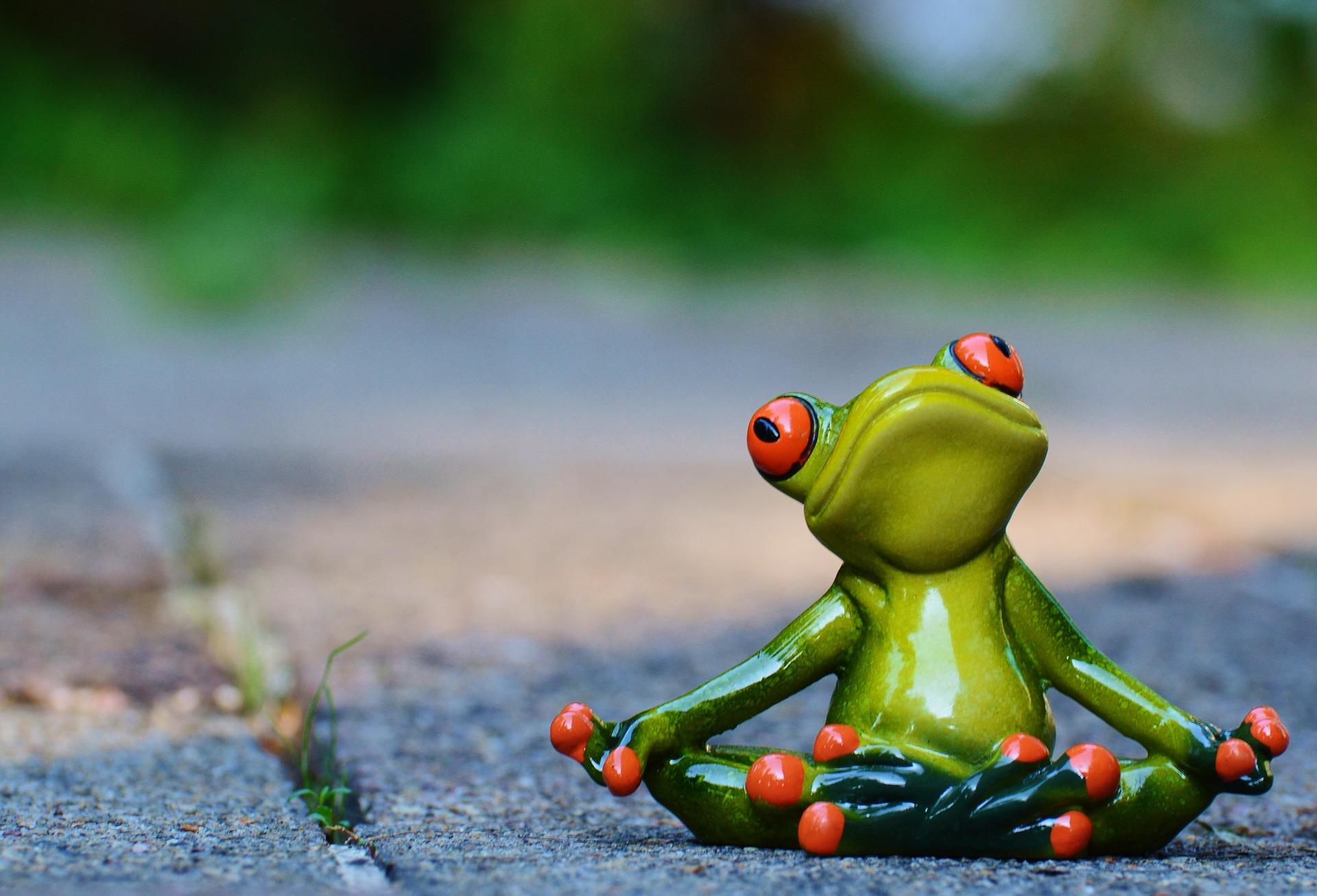 40 pytań, które powinieneś sobie zadać ZANIM założysz firmę [checklista]